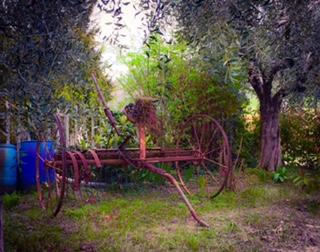 #lemarchemagic #lemarche #agriturismo #farmlife #bio #goodliving #Italianadventures #worldofbees #chickens #bnb #FonteCa