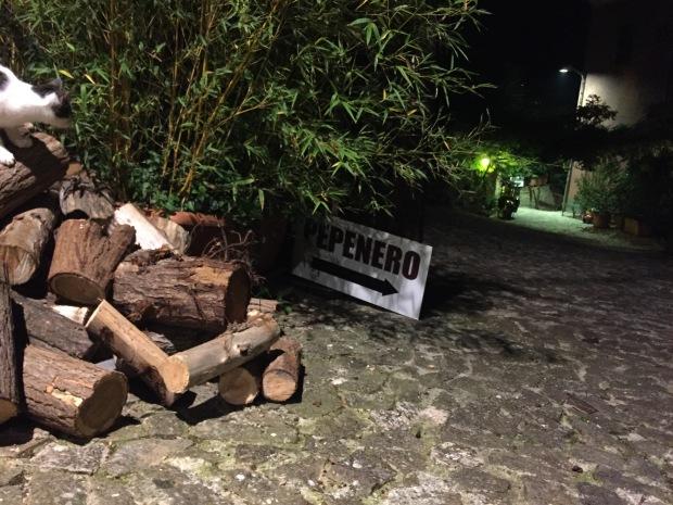 #lemarchemagic #AscoliPiceno #pepenero #cupramarittima #dinnersout #Italiantravel